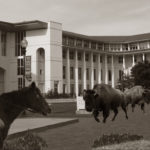 Remember the Good Ol' Days: A Message from the Dean of Goizueta