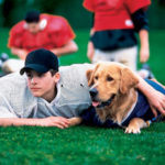 Emory Admissions Sends Unintended Copies of Air Bud: Golden Receiver to Non-Admitted Students