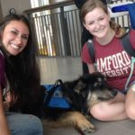 Therapy Dog Resigns After Seeing Severity of Emory Student Body's Mental Health Issues